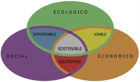 Diagrama sostenibilidad Javier Lamela Informe Estado Global 2013